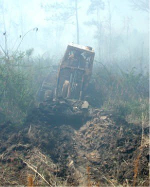 Firebreak - Plow cutting a firebreak in advance of a forest fire, South Carolina