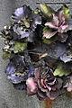 Fleurs de cimetière 29 01 2011 C 17.jpg