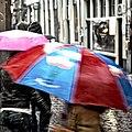 Flickr - NewsPhoto! - paraplu's.jpg