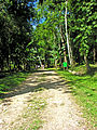 Flickr - archer10 (Dennis) - Belize-0970.jpg