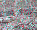 Flickr - jimf0390 - JimF 03-08-12 0007a nature recycling.jpg