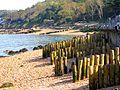 Flickr - ronsaunders47 - stumped for a place to walk..jpg