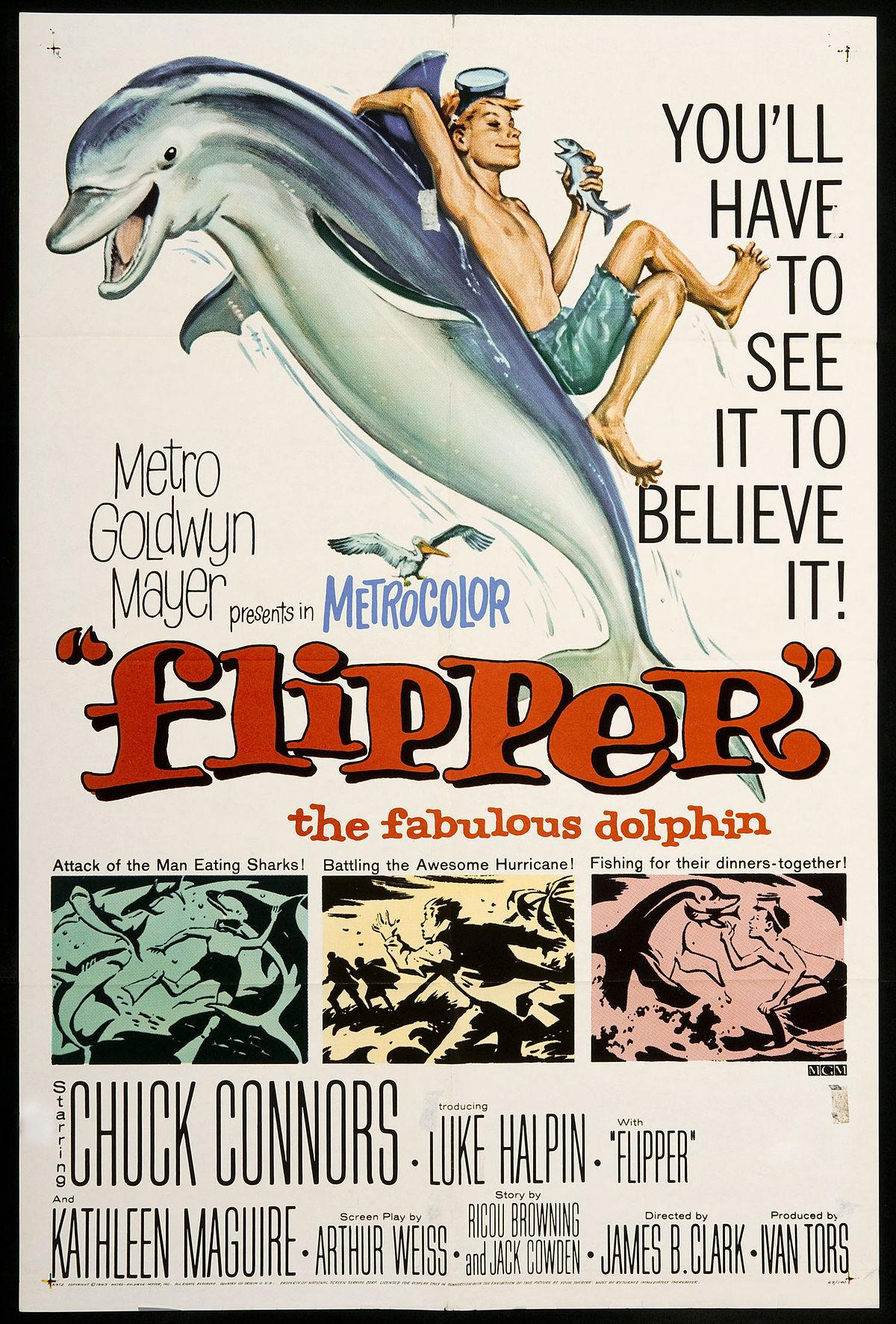 Flipper 1963