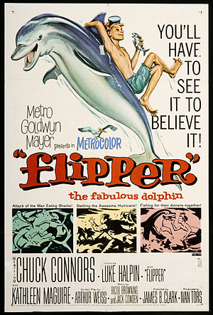 Flipper (1963 film) - Theatrical release poster