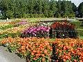 Floriade 2002 - flowers.jpg