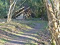 Footbridge near Grayswood - geograph.org.uk - 684835.jpg