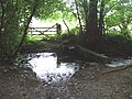 Footbridge over tributary of River Lynher - geograph.org.uk - 531536.jpg