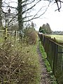 Footpath at rear of cottages in Acton Bridge - geograph.org.uk - 1773490.jpg