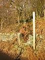 Footpath through Upper Heys Wood - geograph.org.uk - 1070226.jpg