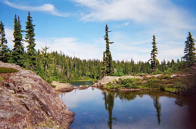 Strathcona Provincial Park: Forbidden Plateau