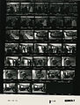 Ford B1113 NLGRF photo contact sheet (1976-08-18)(Gerald Ford Library).jpg