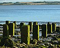 Foreshore posts - geograph.org.uk - 569251.jpg