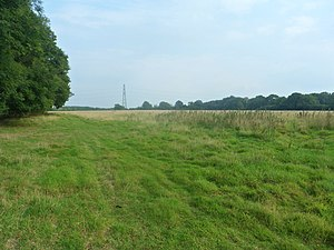 """Forge Wood - """"Phase 2"""" of the development will occupy fields east of the Balcombe Road and south of the footpath to Copthorne (behind the treeline on the left)."""