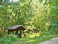 Forst Grunewald - Huette (Grunewald Forest - Picnic Site and Hut) - geo.hlipp.de - 41397.jpg