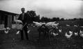 Francis Pélissier élevage poules.png