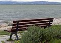 Friedrichshafen - Promenade - Bänke 003.jpg