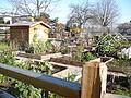 Garden in Vancouver BC 02.jpg