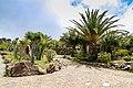 Garden with cacti and palm trees at Mirador César Manrique observation deck in Valle Gran Rey on La Gomera, Spain (48293823247).jpg