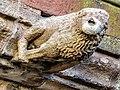 Gargouille de la cathédrale. (8).jpg