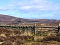 Gate to Kippet Law - geograph.org.uk - 387184.jpg