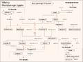 Genealogia XXI d.png