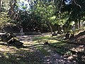 Geologische Gesteinssammlung Park Villa Haas.jpg