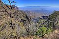 Gfp-texas-big-bend-national-park-chisos-mountains-in-the-distance.jpg
