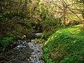 Glen Maye - geograph.org.uk - 773643.jpg