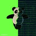 Google Panda Update drdiscount 01.png