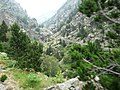 Gorges de Núria des del cremallera P1030253.JPG