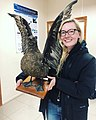 Grace holding a taxidermied Skua at INACH, Chile.jpg