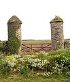 Grand gate posts - geograph.org.uk - 531545.jpg