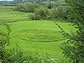 Grass Maze below Riddlesden Hall - geograph.org.uk - 1506447.jpg