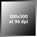 Gray300x300at96dpi.jpg