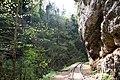 Guam canyon, Гуамское ущелье, Западный Кавказ.jpg