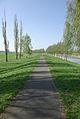 Gurkenradweg-Schmogrow-Spree.jpg