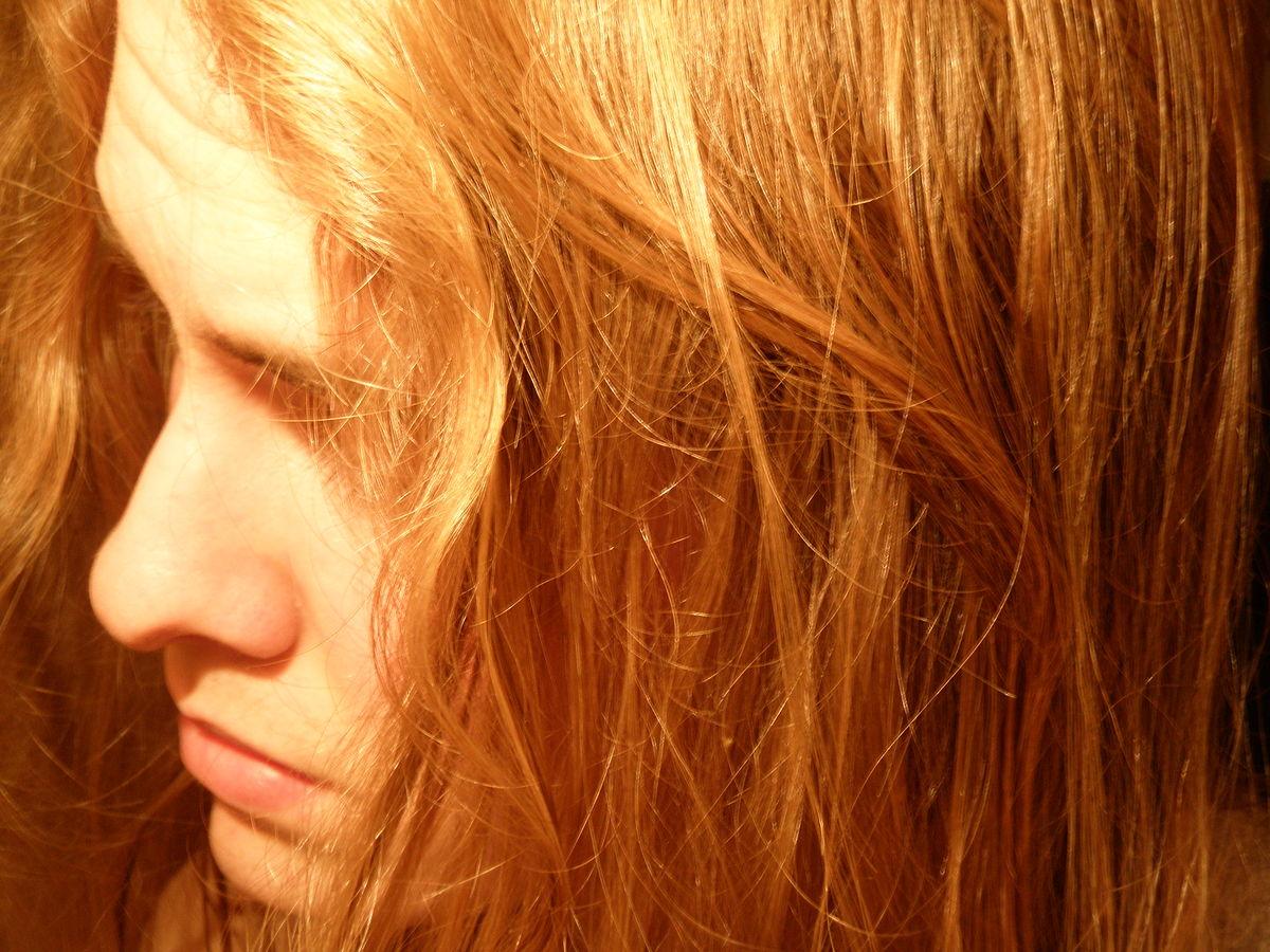 hair – Wikisłownik, wolny słownik wielojęzyczny