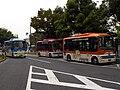 Hachiko-Bus trio October-2010.jpg