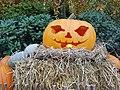 Halloween pumpkin in LIseberg.jpg