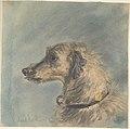 "Head of a Scottish Deerhound, after Landseer's ""Hafed"" MET DP804394.jpg"