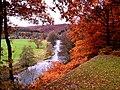Herfst in België.jpg
