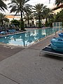 Hilton West Palm Beach swimming pool.jpg