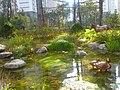 Hipark city ILSan - panoramio (1).jpg
