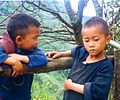 Hmong minority children in Sa Pa.JPG