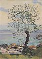 Hodler - Weidebaum am See - ca1890.jpeg