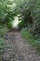 Holly Lane - geograph.org.uk - 975224.jpg