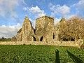 Hore Abbey, Caiseal, Éire - 45671303685.jpg