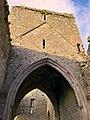Hore Abbey, Caiseal, Éire - 45861541314.jpg