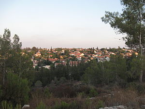 Oranit - View of Oranit from Horshim forest