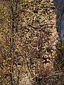 Hrochův Hrádek, zeď II.jpg